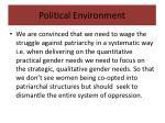 political environment5