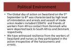 political environment7