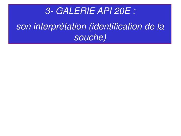 3- GALERIE API 20E :