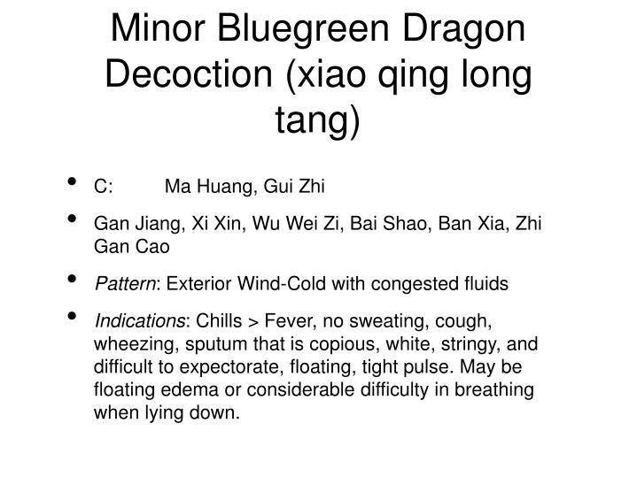 Minor Bluegreen Dragon Decoction (xiao qing long tang)