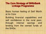 the core strategy of shg bank linkage programme