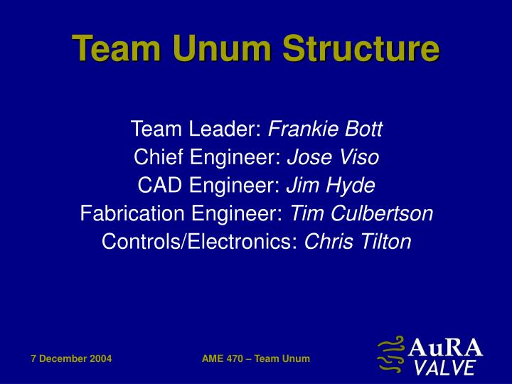 Team unum structure