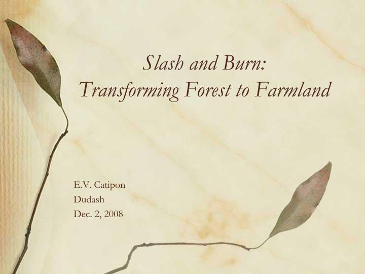 slash and burn transforming forest to farmland n.
