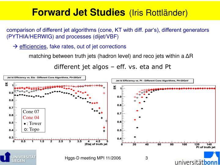 Forward Jet Studies