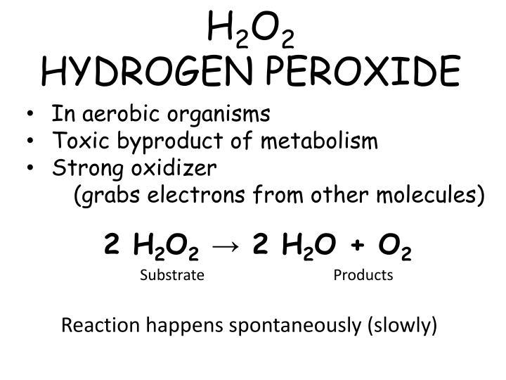 H 2 o 2 hydrogen peroxide