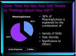 does how you see your job relate to feelings about your job