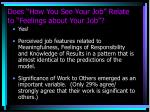 does how you see your job relate to feelings about your job2