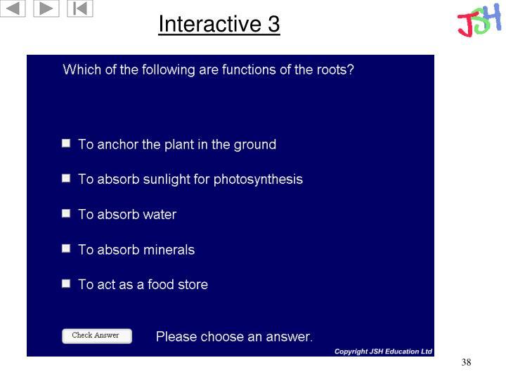 Interactive 3