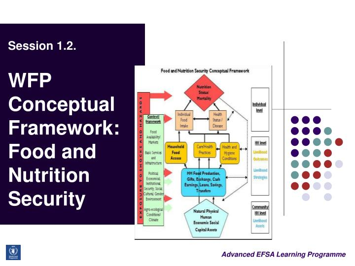 Session 1 2 wfp conceptual framework food and nutrition security