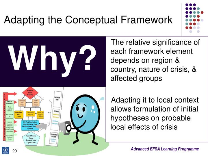 Adapting the Conceptual Framework