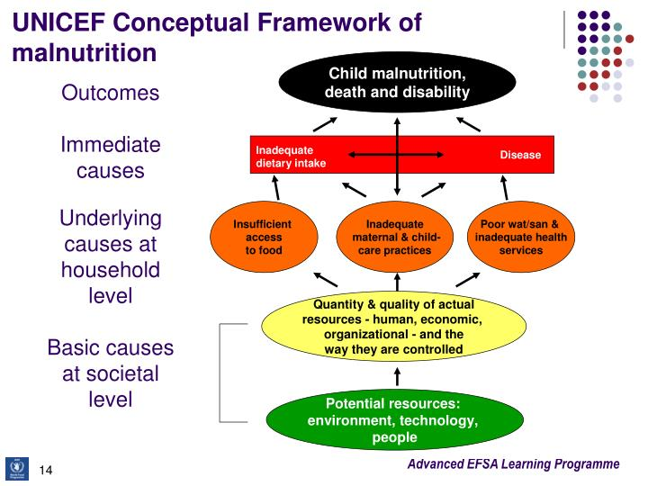 UNICEF Conceptual Framework of malnutrition