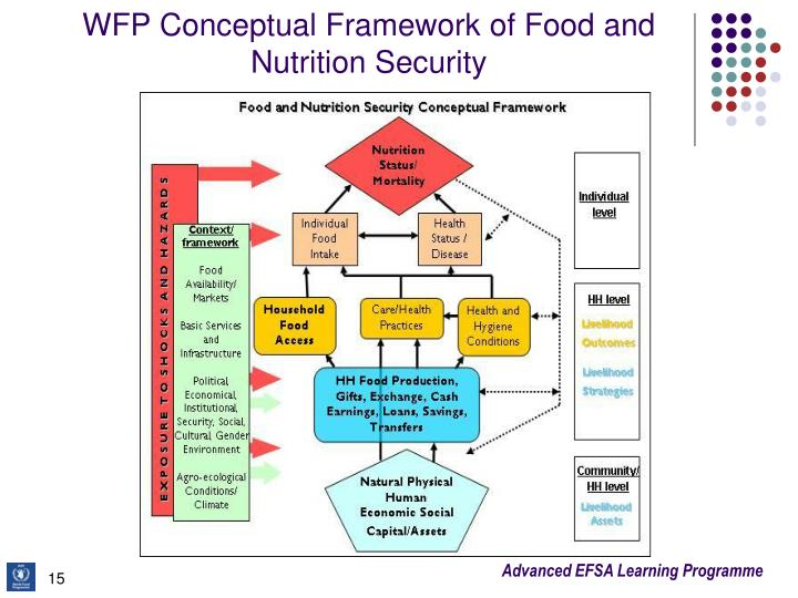 WFP Conceptual Framework of Food and Nutrition Security