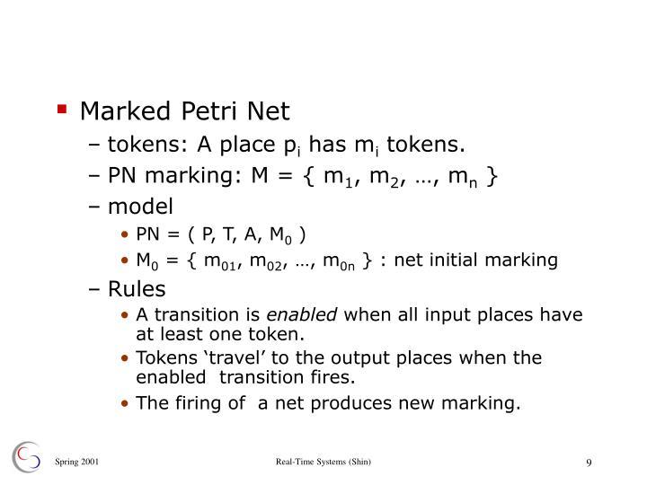 Marked Petri Net