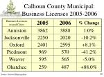 calhoun county municipal business licenses 2005 2006