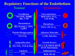 regulatory functions of the endothelium normal dysfunction