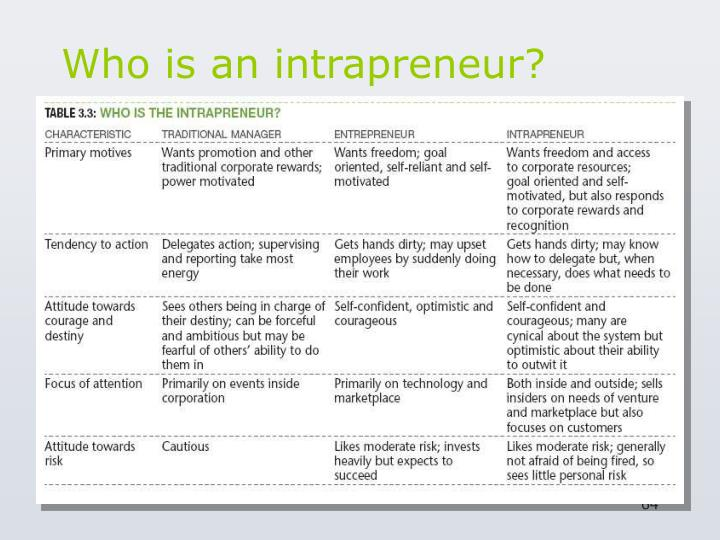 Who is an intrapreneur?
