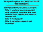 analytical agenda and m e for caadp implementation