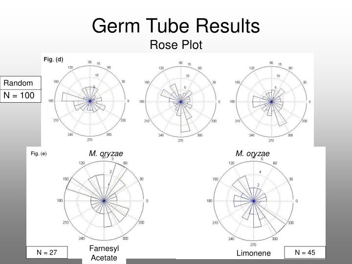 Germ Tube Results