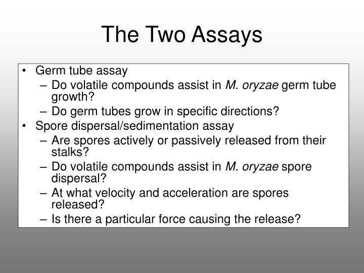 The Two Assays