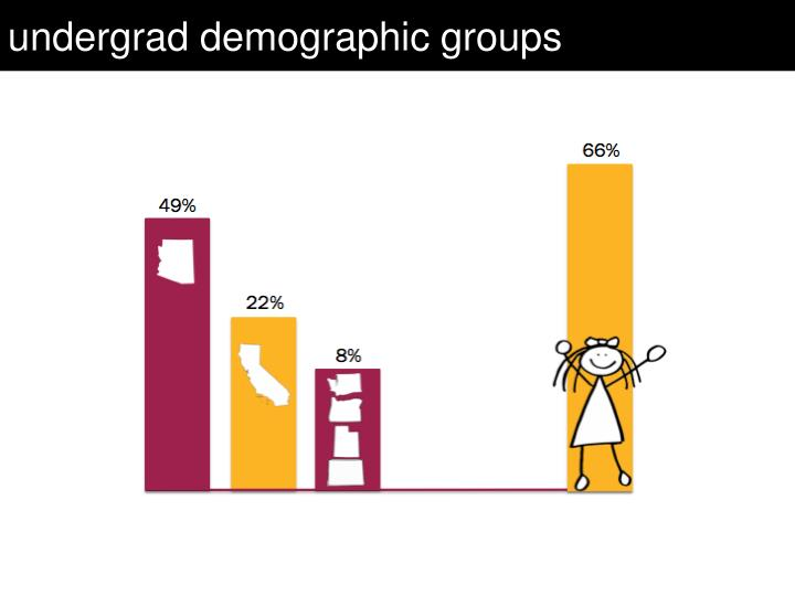 undergrad demographic groups