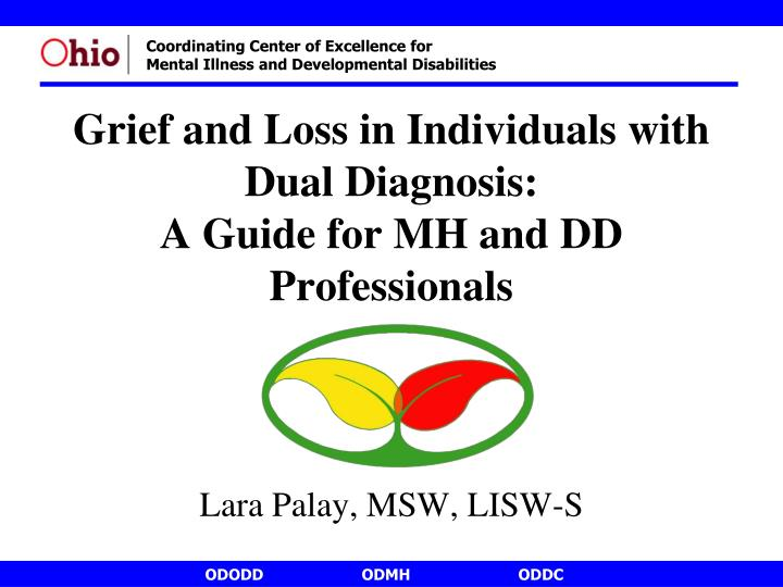 grief and loss in individuals with dual diagnosis a guide for mh and dd professionals n.