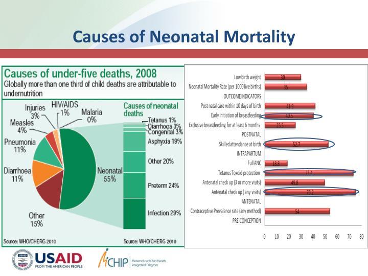 Causes of Neonatal Mortality