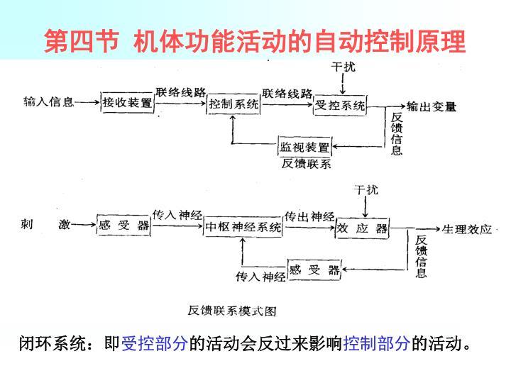 第四节 机体功能活动的自动控制原理