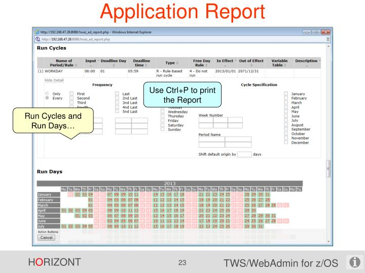 Application Report
