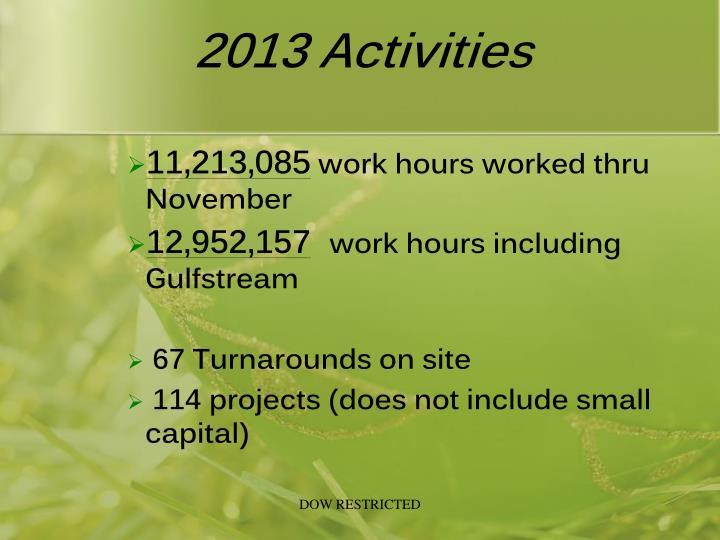 2013 activities