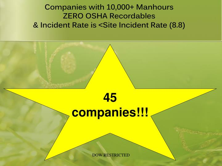 Companies with 10,000+ Manhours