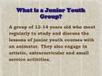 what is a junior youth group