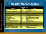 capital market actors