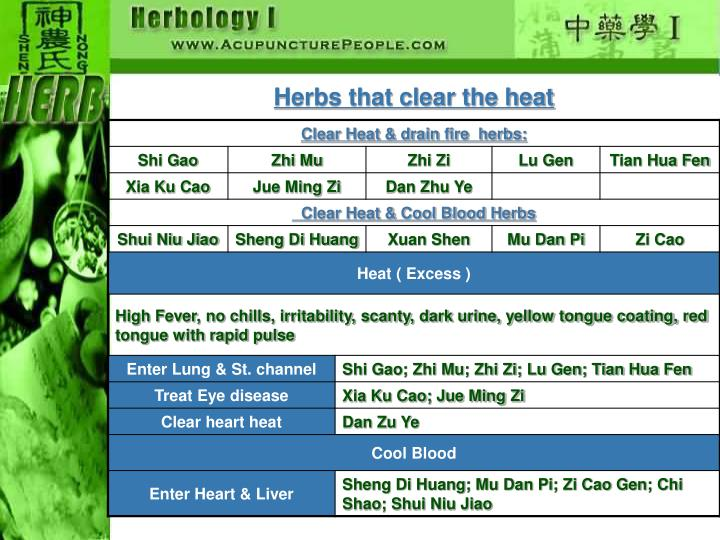Herbs that clear the heat