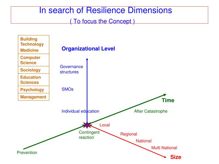 In search of Resilience Dimensions