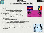 critical common understanding