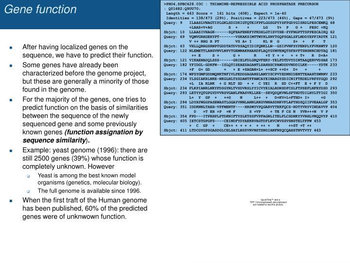 Gene function