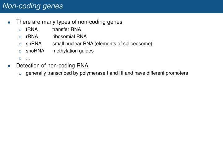 Non-coding genes