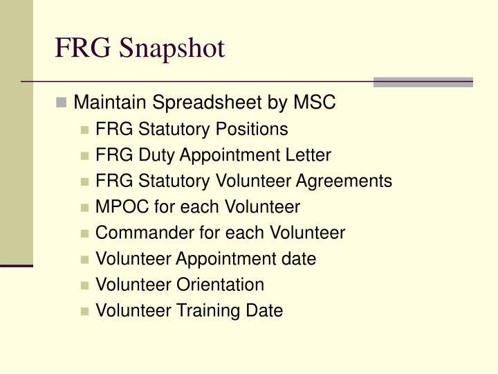 FRG Snapshot