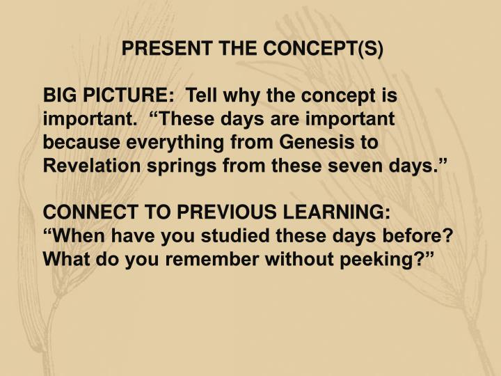 PRESENT THE CONCEPT(S)