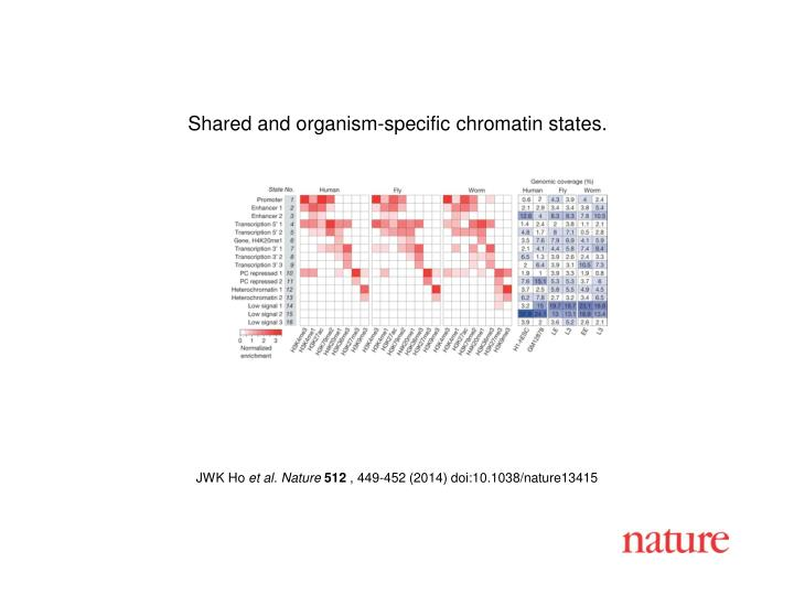 Shared and organism-specific chromatin states.