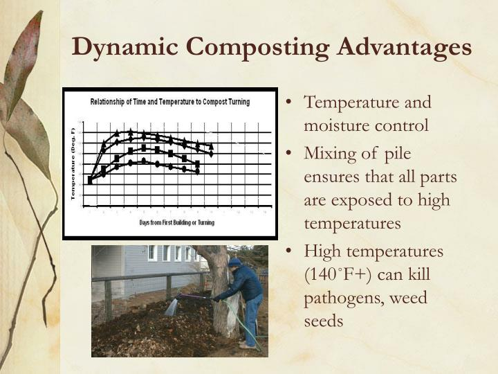 Dynamic Composting Advantages