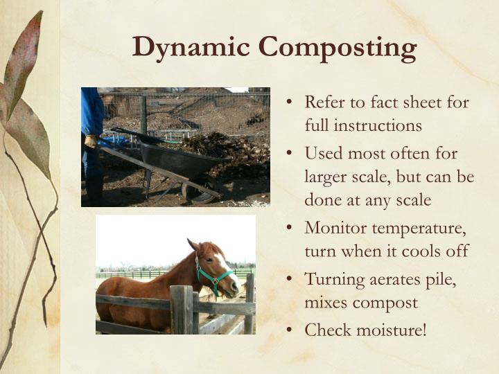 Dynamic Composting