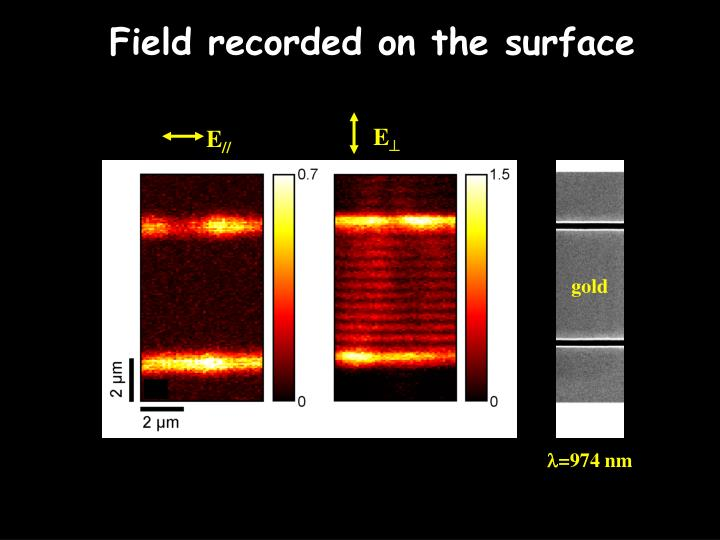 Field recorded on the surface