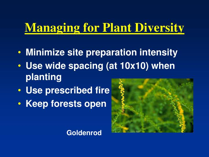 Managing for Plant Diversity
