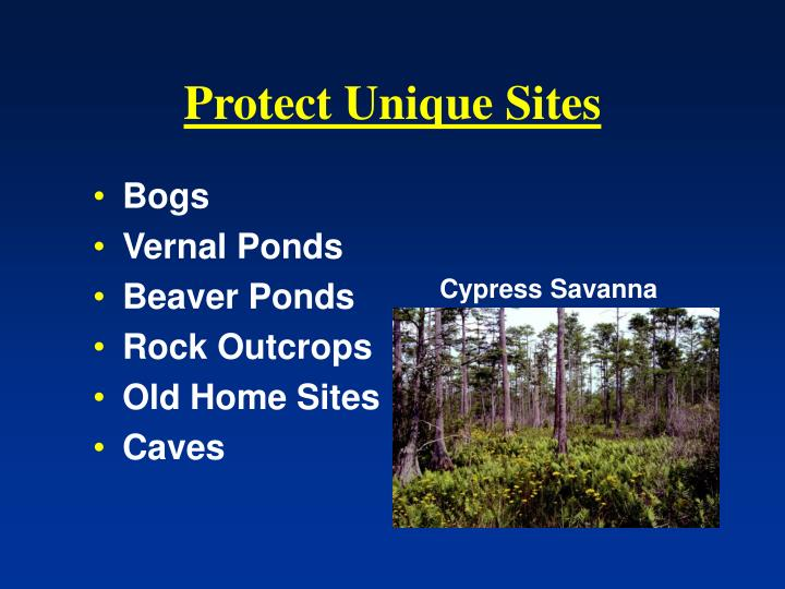 Protect Unique Sites