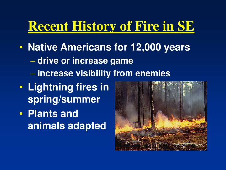 Recent History of Fire in SE