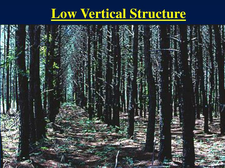 Low Vertical Structure