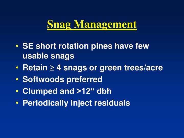 Snag Management