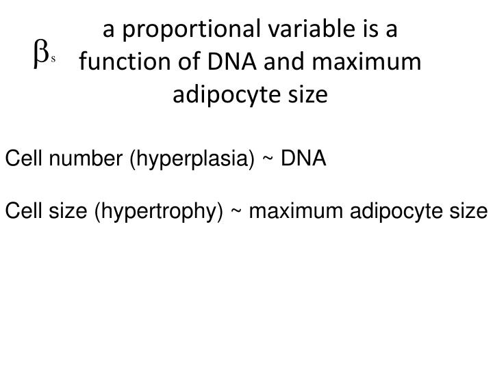 a proportional variable is a function of DNA and maximum adipocyte size