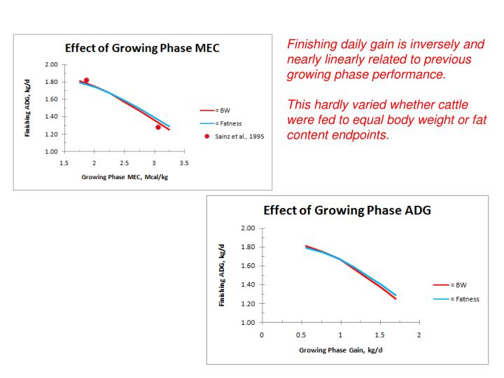 Finishing daily gain is inversely and nearly linearly related to previous growing phase performance.